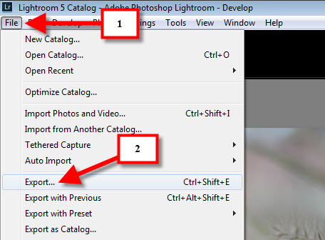 export lightroom